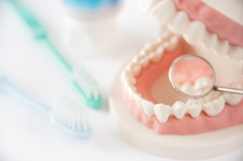 Prophylaxe: Vorsorge bei Zahnärztin Dr. Julia Lücking Adelsdorf